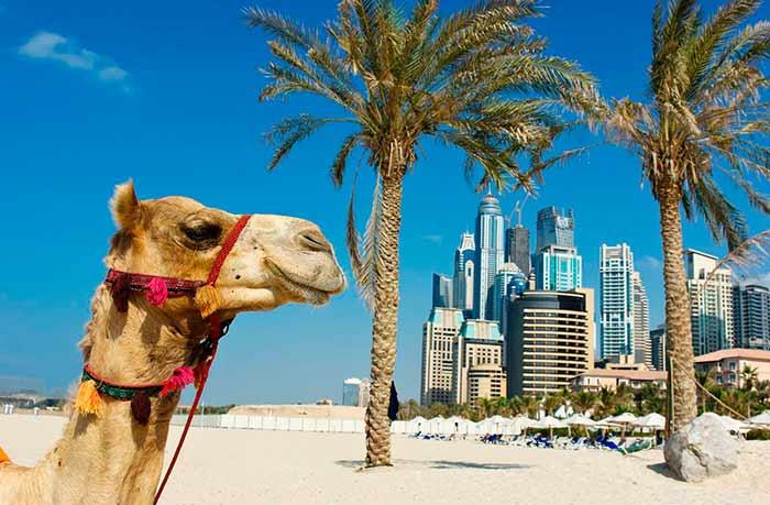 Мобильный интернет в ОАЭ