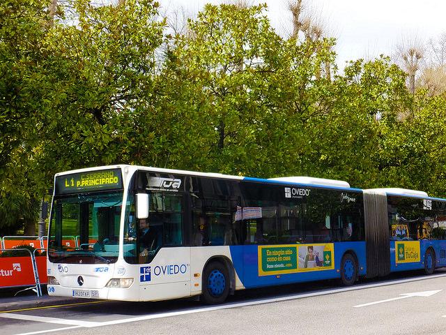 Путешествие на автобусе по миру
