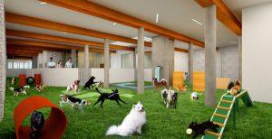гостиницы для животных