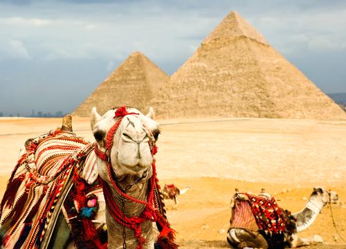 зимовка в египте, мобильная связь за границей