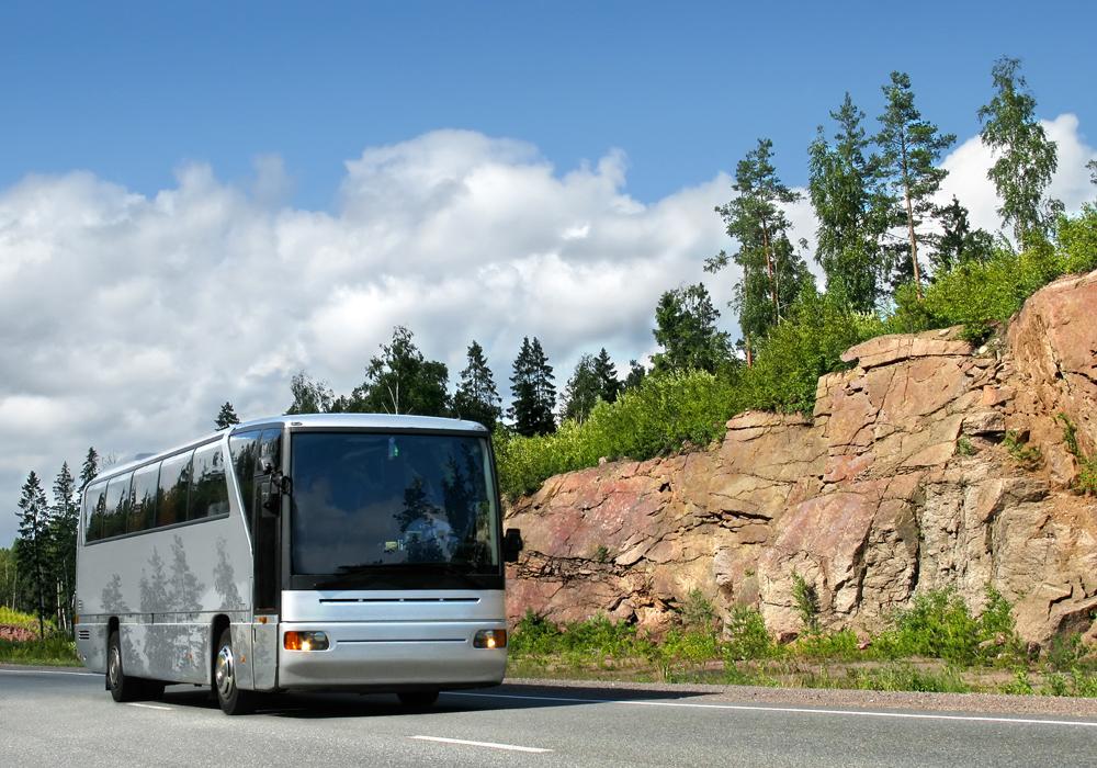 Детские автобусные туры