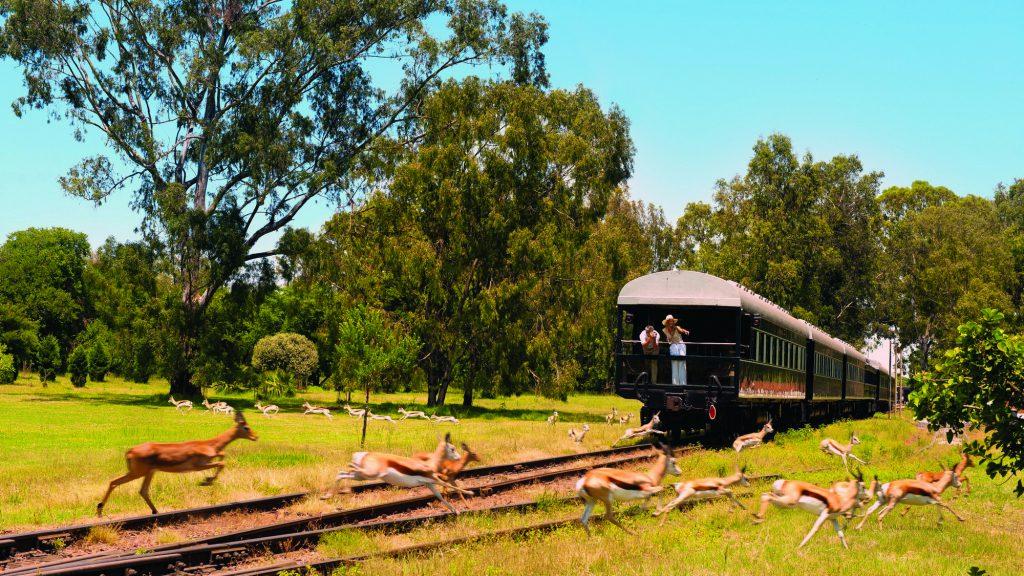 Путешествия на поезде, ЮАР
