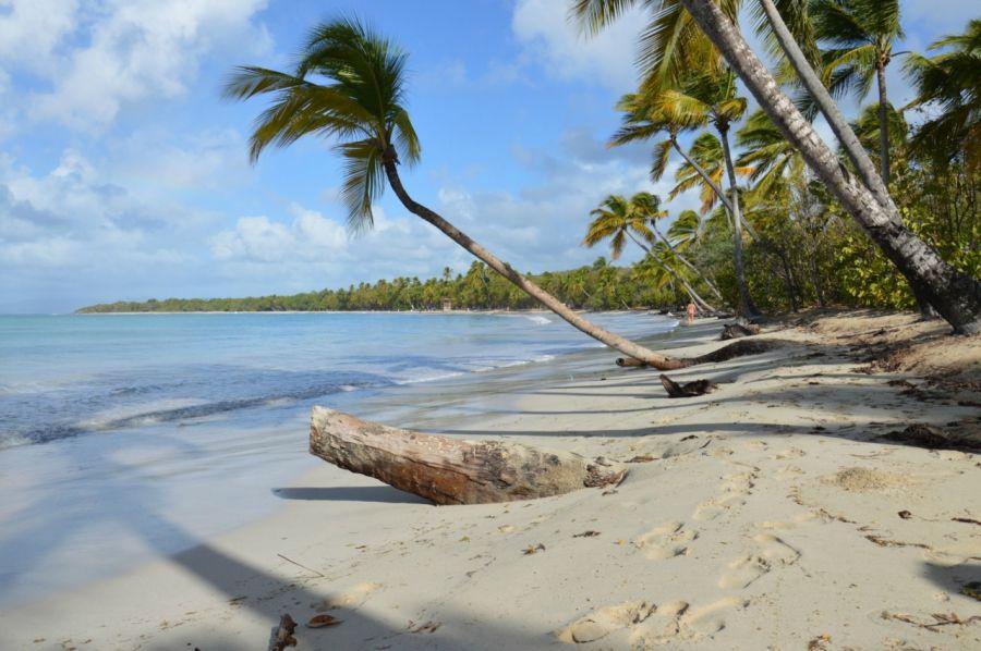 Где и как купить? Мобильный интернет и связь Мартиники