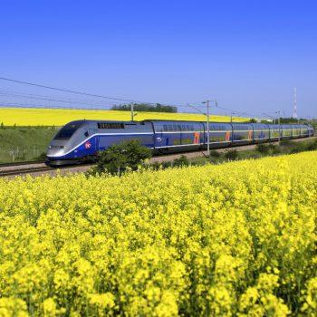 Экскурсии на поездах – туры: чем они так привлекательны?