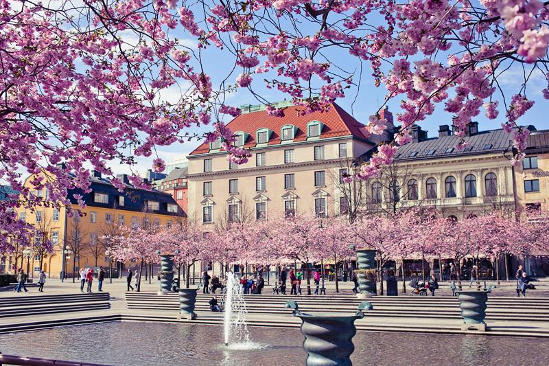 Весенние каникулы в Стокгольме и отзыв о сим-карте Ortel Mobile