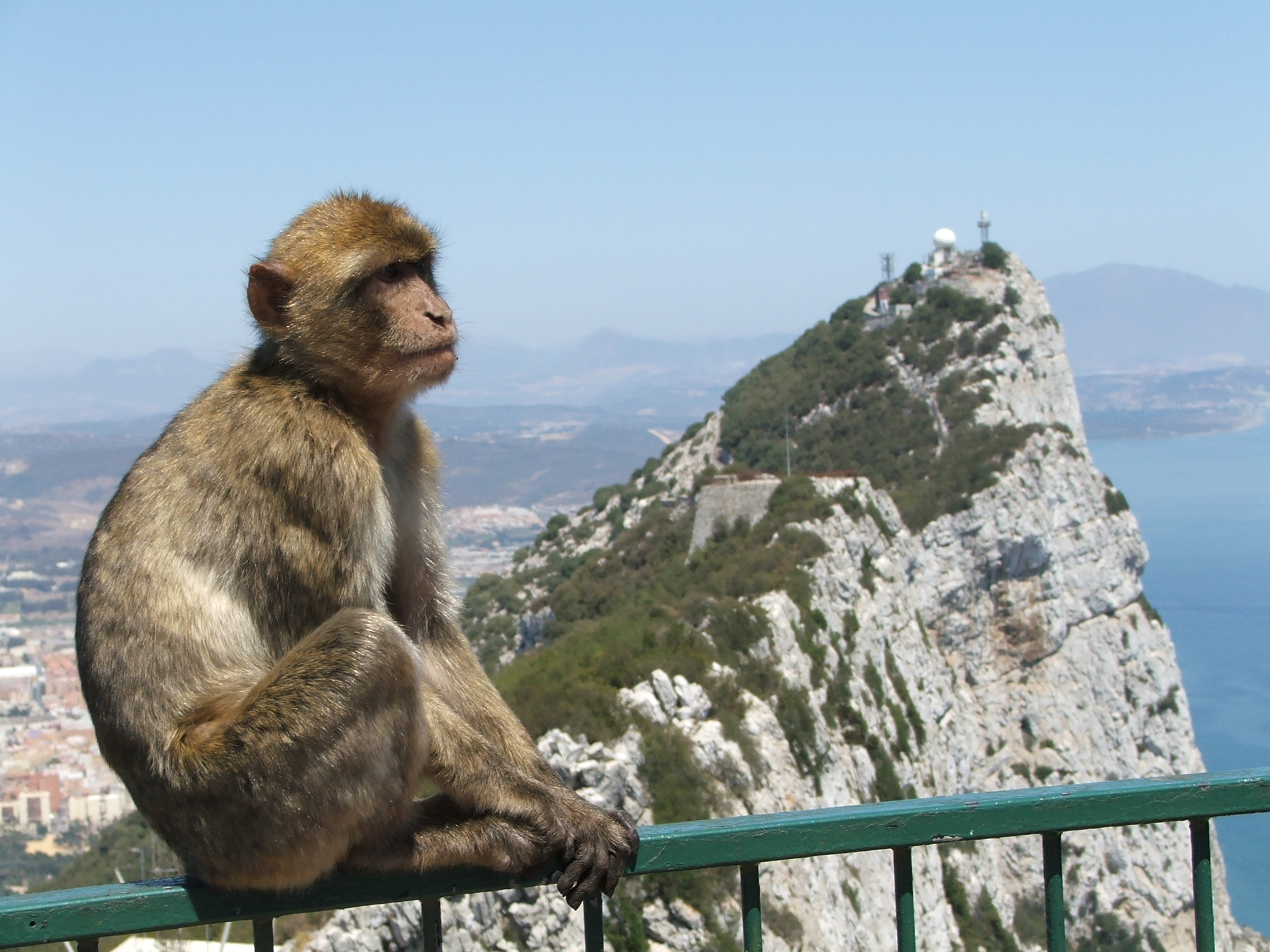 Во сколько обойдутся услуги сотовой связи на Гибралтаре