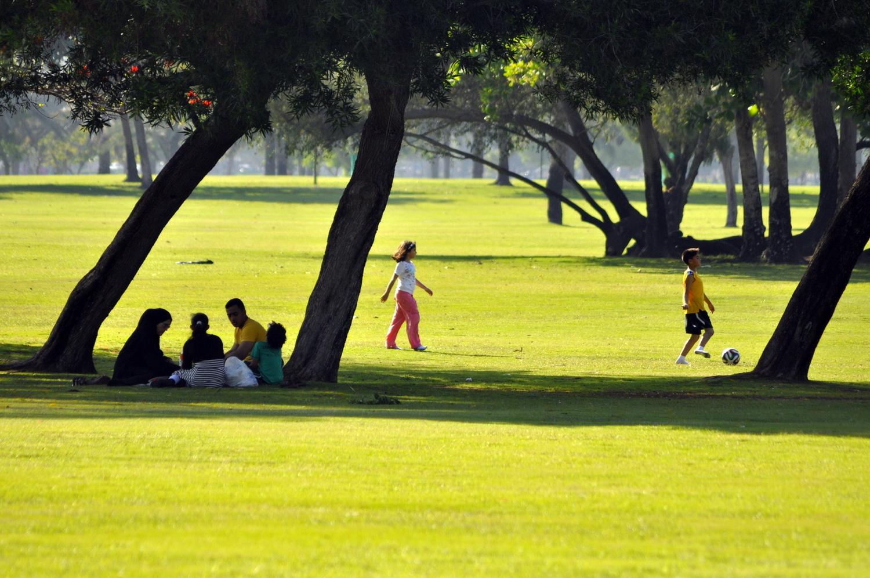 в Дубае, Alfa Safa Park