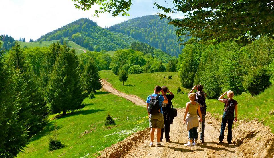 Карпаты в Румынию