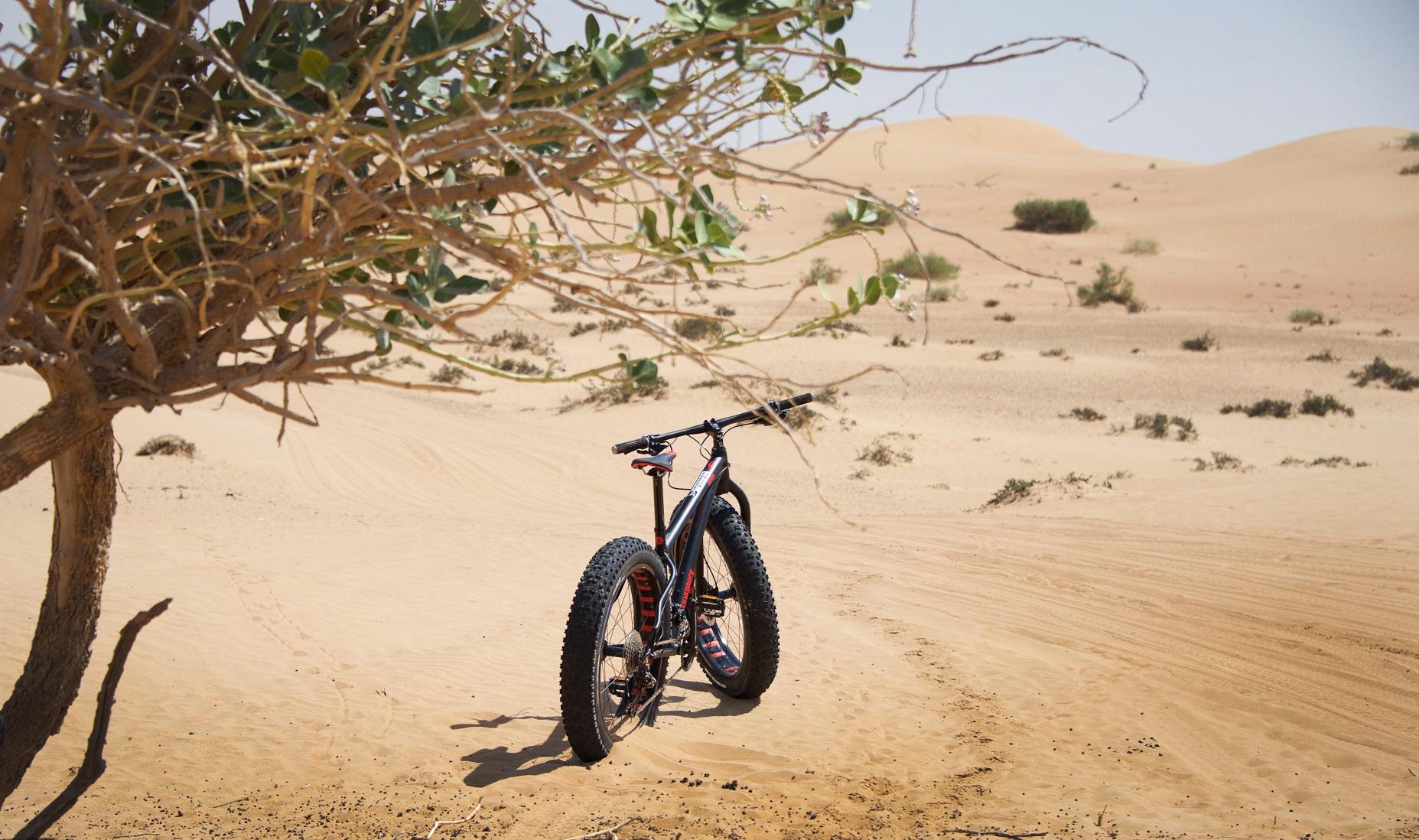 экскурсия на велосипеде по Дубае