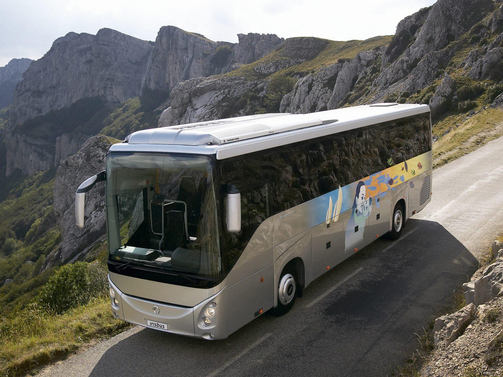 Быть или не быть: сложности, опасности автобусных туров для пенсионеров