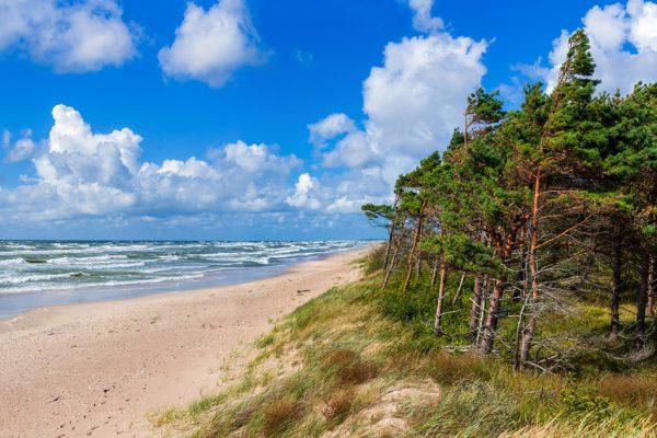 Отдых в Паланге (Литва) с семьей и отзыв о GlobalSim