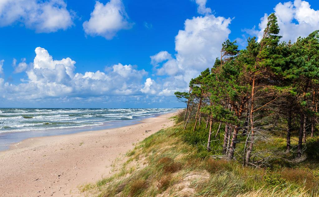 Отдых в Паланге (Литва) с семьей и отзыв о GlobalSim Direct
