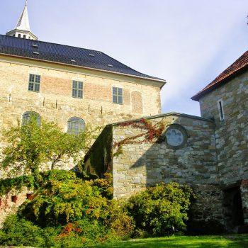 Наше незабываемое свадебное путешествие в Норвегию и отзыв об Ortel Mobile
