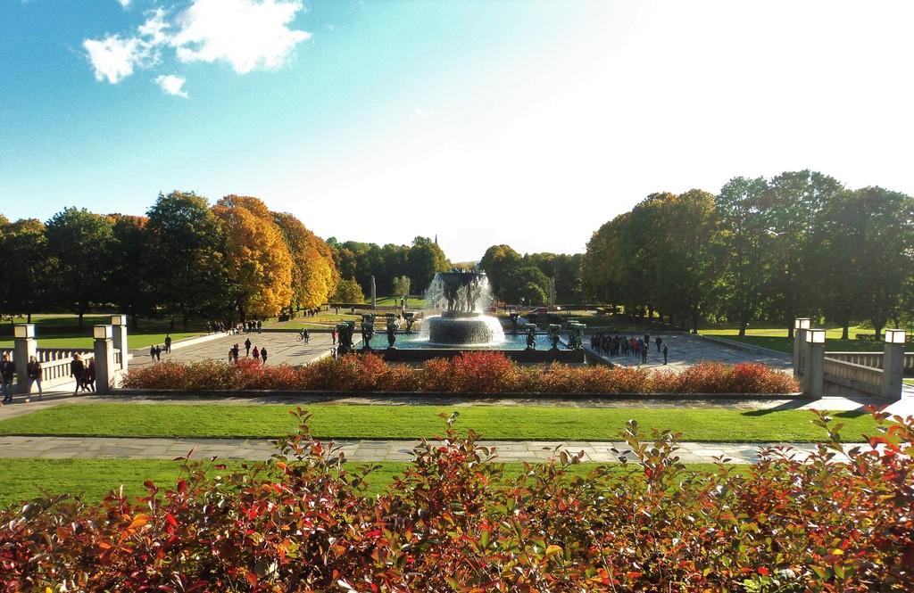 свадебное путешествие в Норвегию и отзыв об Ortel Mobile