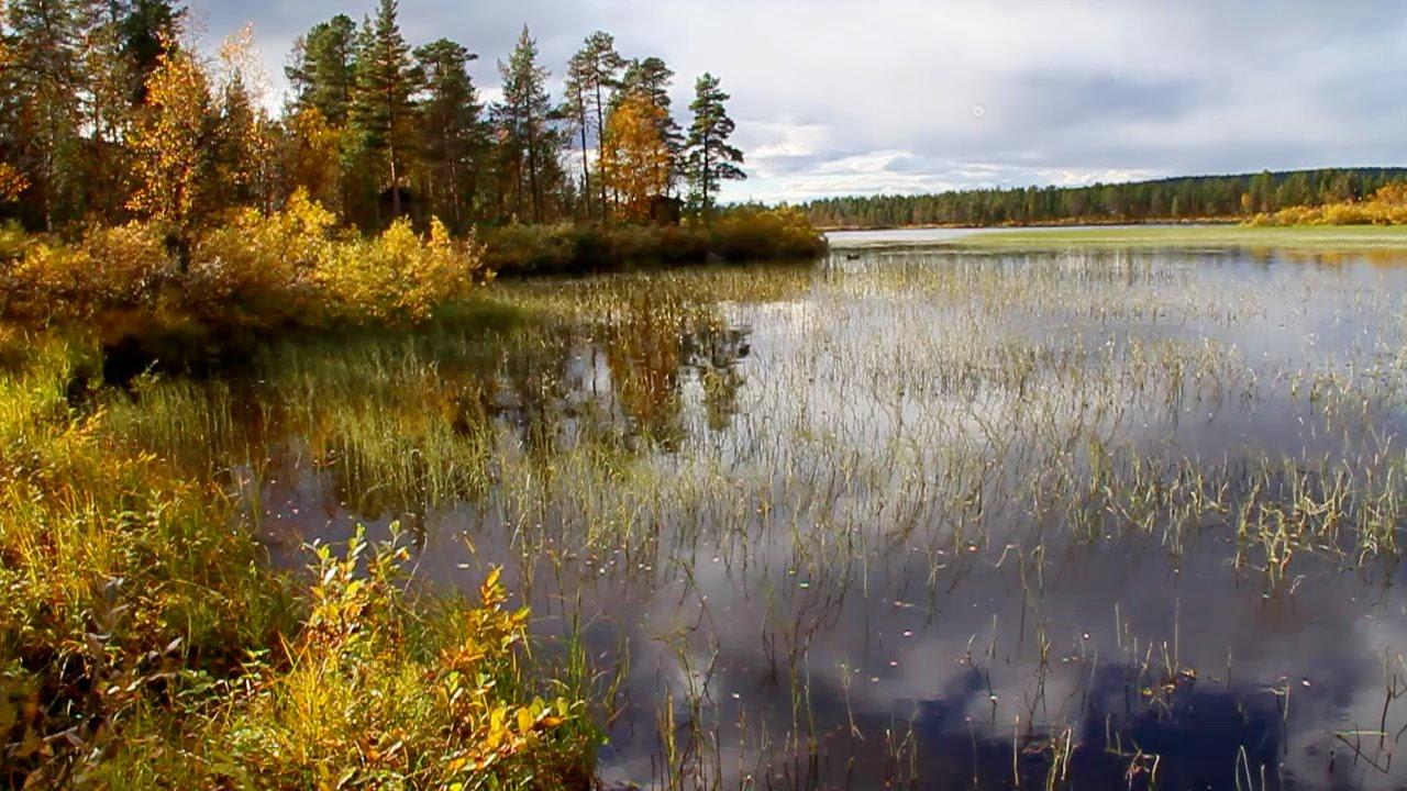 Выбираем сим-карту для поездки в Финляндию