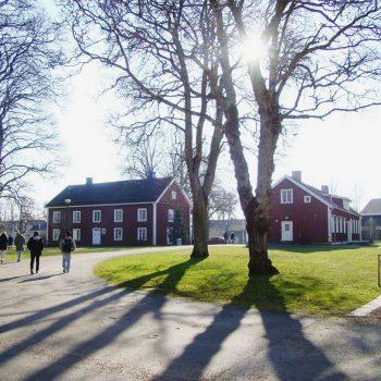 Изучение шведского языка в школе Axevalla folkhögskola и мнение о тарифе Ortel Mobile