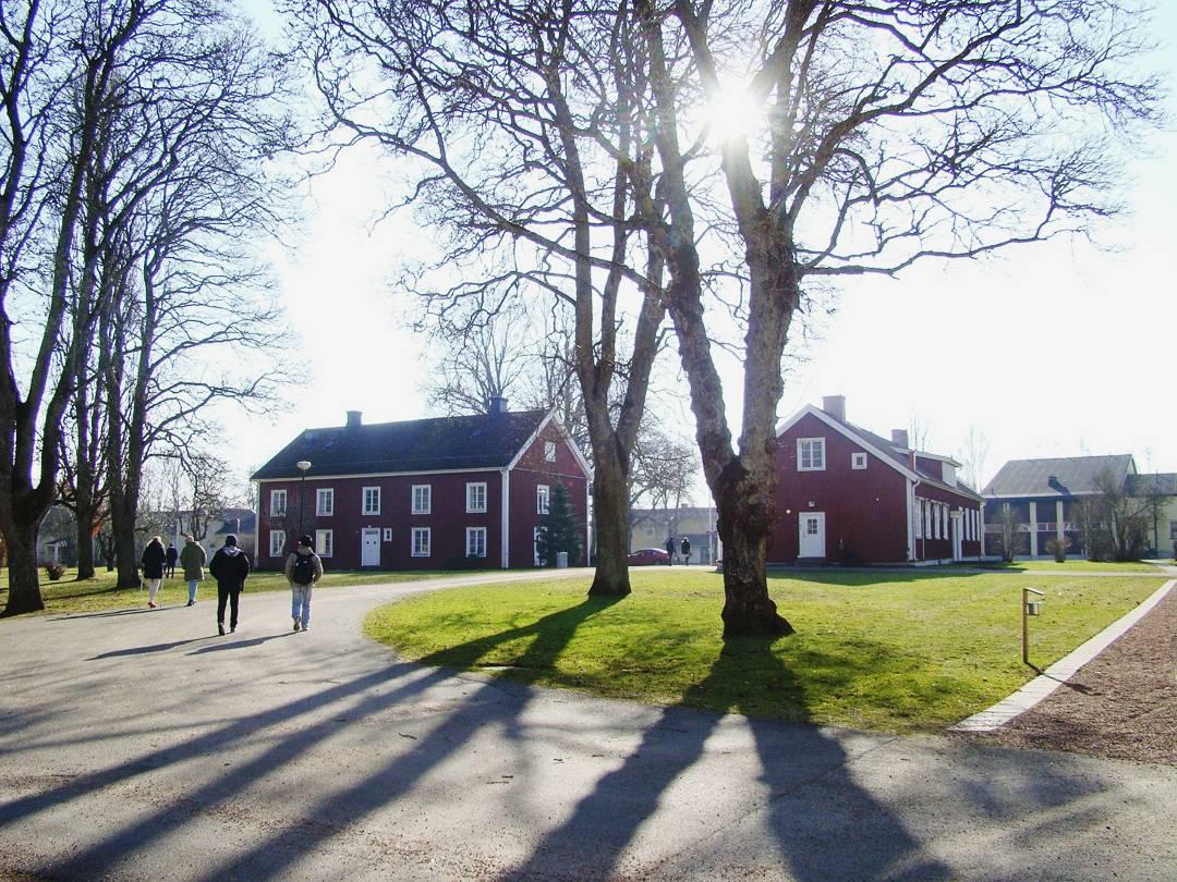 Изучение шведского языка в школе Axevalla folkhögskola и мнение о тарифе Orange Mundo