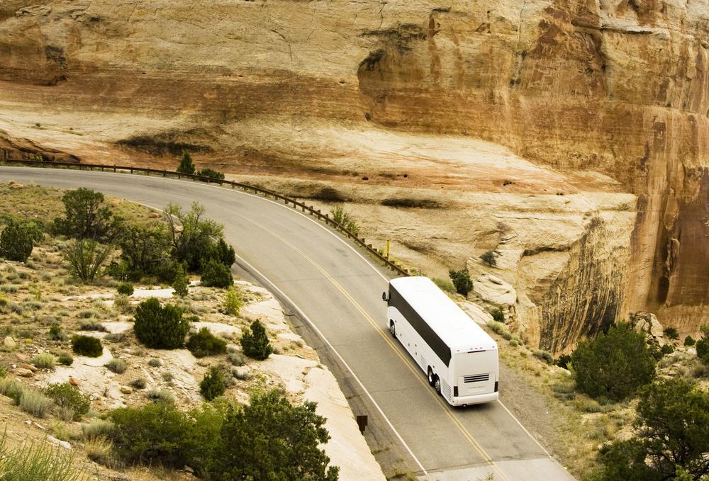 Автобусы в США: несколько полезных советов для туристов