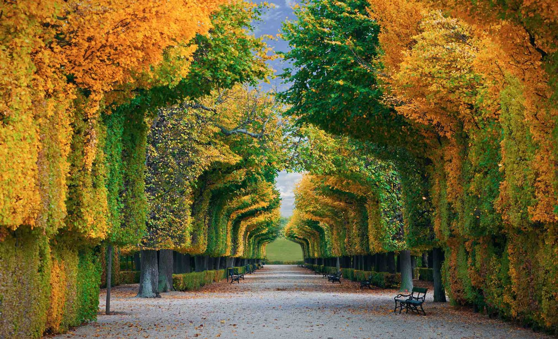 Поездка на выходные в Австрию в октябре: выбор выгодного тарифа за границей