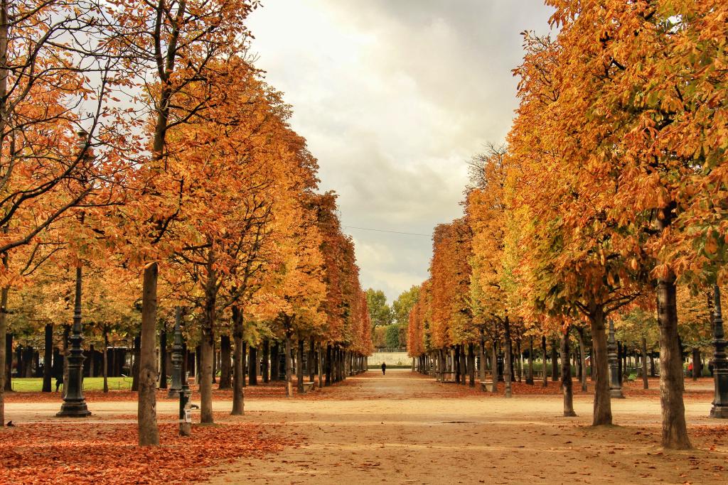 Замечательный Люксембург в октябре 2017