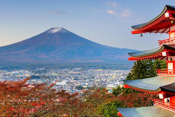 Токио – Япония. Командировка в ноябре 2017