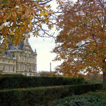 Рабочий визит во Францию и отзыв о сим-карте Ortel