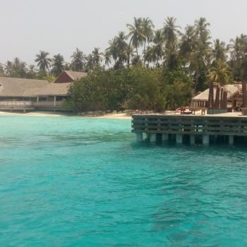 Неделя на Мальдивах в январе и отзыв о тарифе GlobalSim