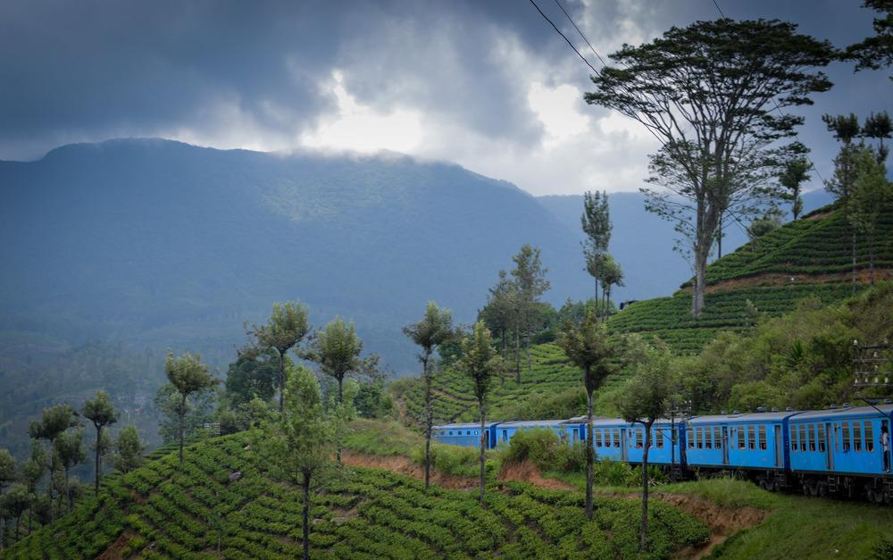 Путешествуем поездом по Шри-Ланке – полезная информация для туристов