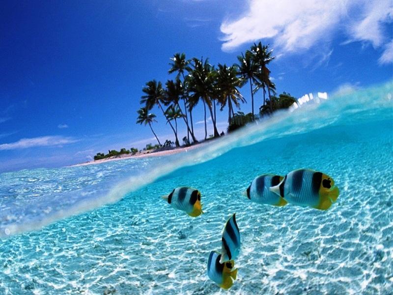 Топ-5 экзотических стран для отдыха в 2020 году без виз