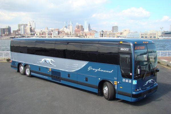Автобусные перевозчики США: какую компанию выбрать туристу?