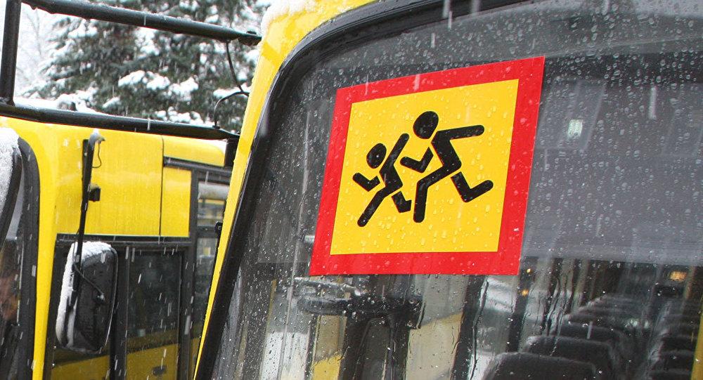 Каким условиям должен соответствовать перевозчик, чтобы иметь возможность перевозить детей