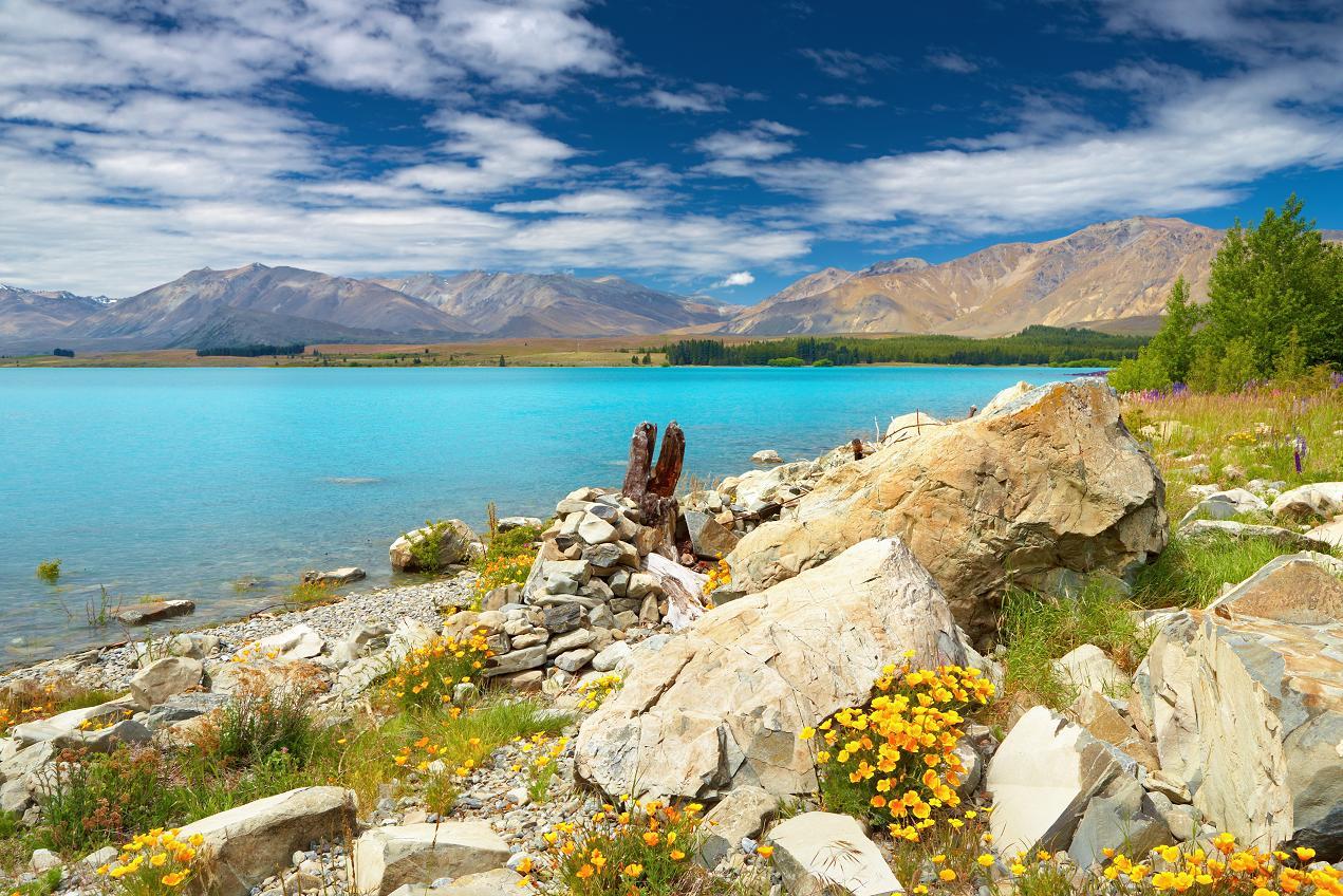 Новая Зеландия - когда и за сколько летать?