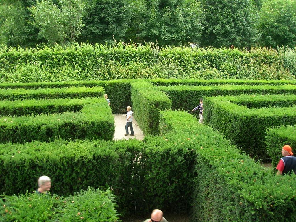 Сады дворца Шёнбрунн 1