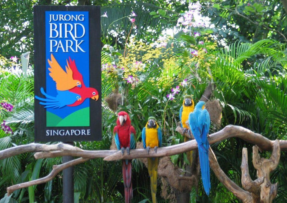 Сингапур Jurong Bird Park