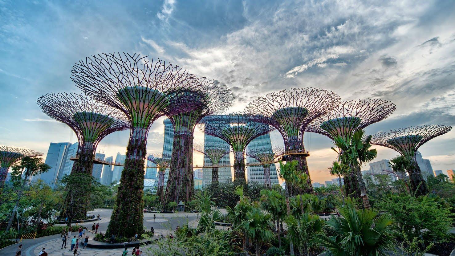 ботаниеский сад сингапур