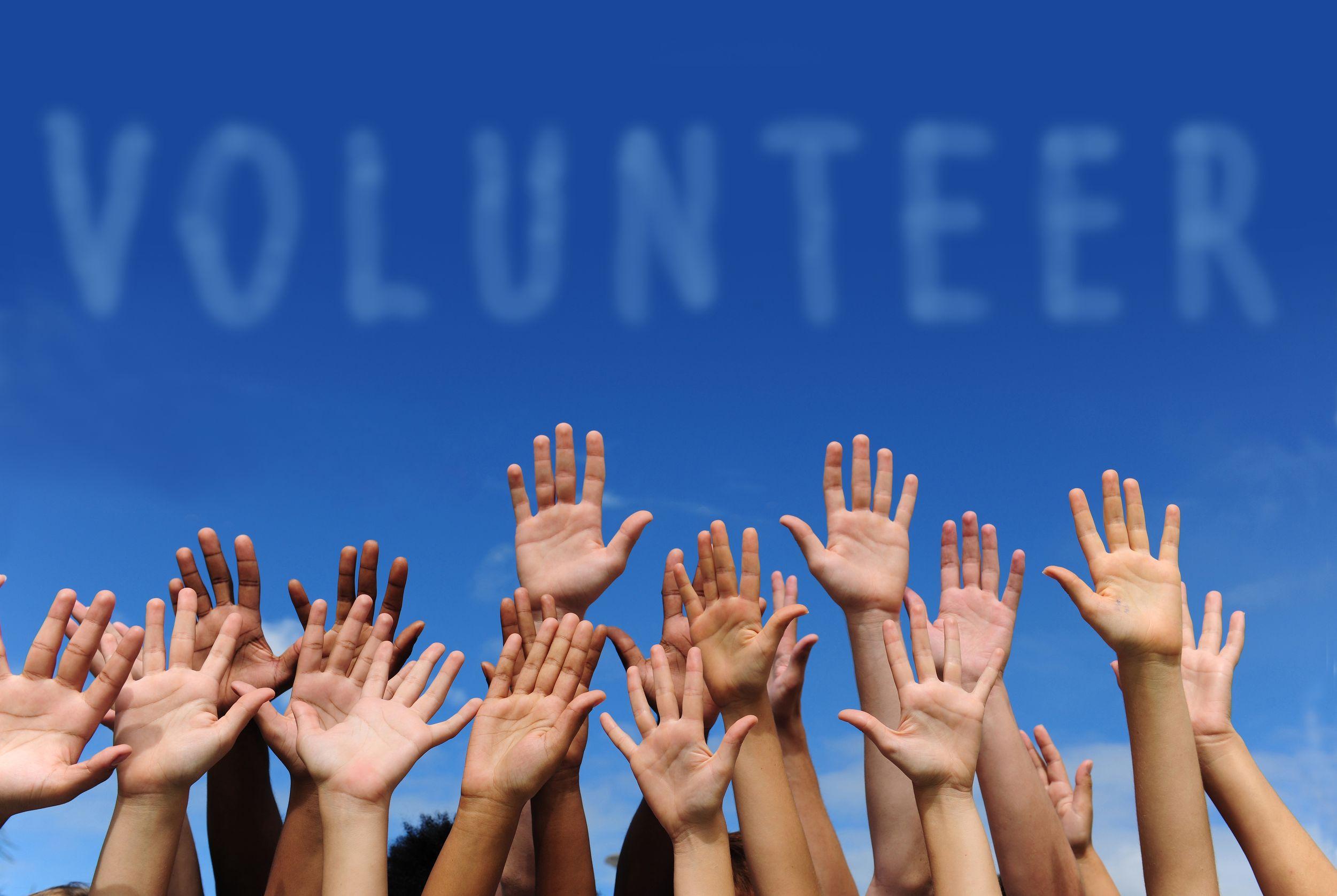 стать волонтером и путешествовать почти бесплатно
