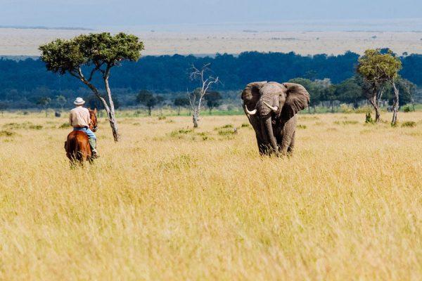 Роуминг в Кении